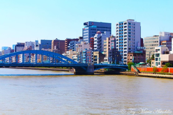 komagata bashi (blue bridge) daytime - MS copy
