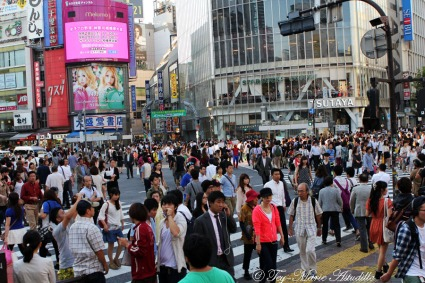 shibuya crossing copy