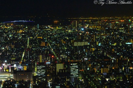 skytree night view 4 copy
